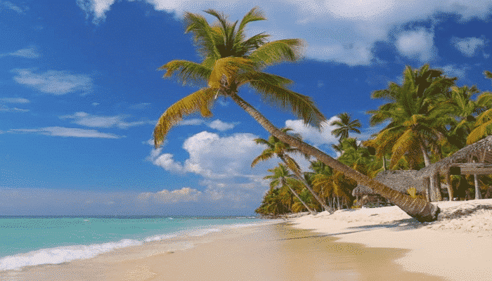 Canada e Caraibi spiaggia di Aruba