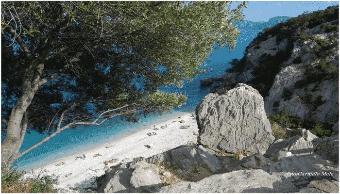 Hotel Nettuno cala luna Sardegna