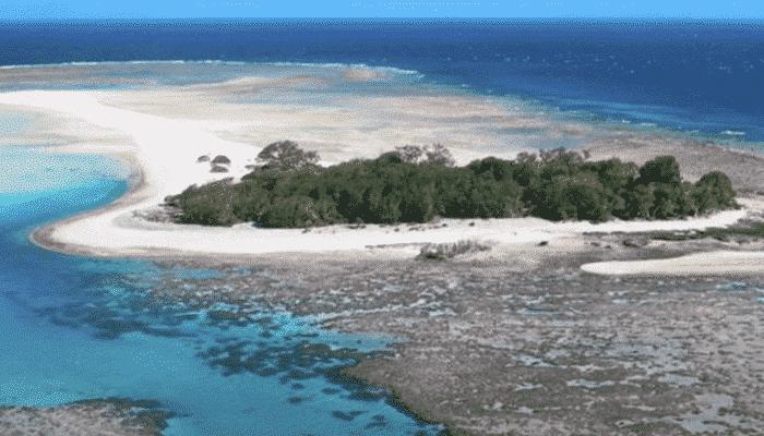 la barriera corallina australiana
